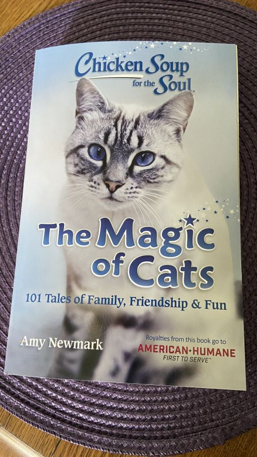 Chicken Soup for the Soul: The Magic of Cats