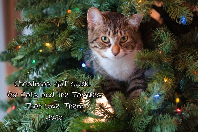 Christmas Gift Guide for Cat Lovers